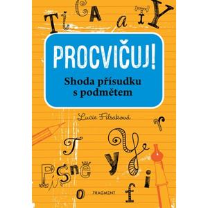 Procvičuj - Shoda přísudku s podmětem | Lucie Filsaková